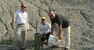 کاشت نهال به یاد محیطبانان